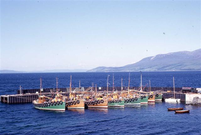 [Carradale Fishing Fleet, 1966]
